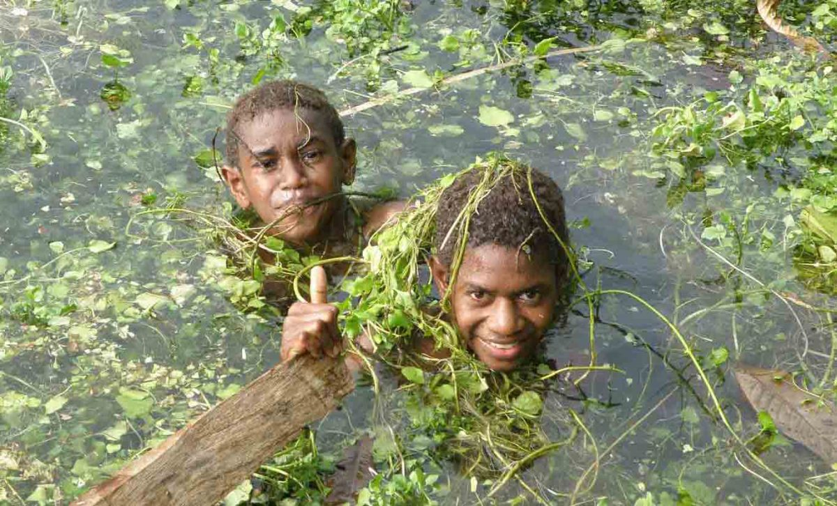 boys in watercress at the matevulu river, Santo