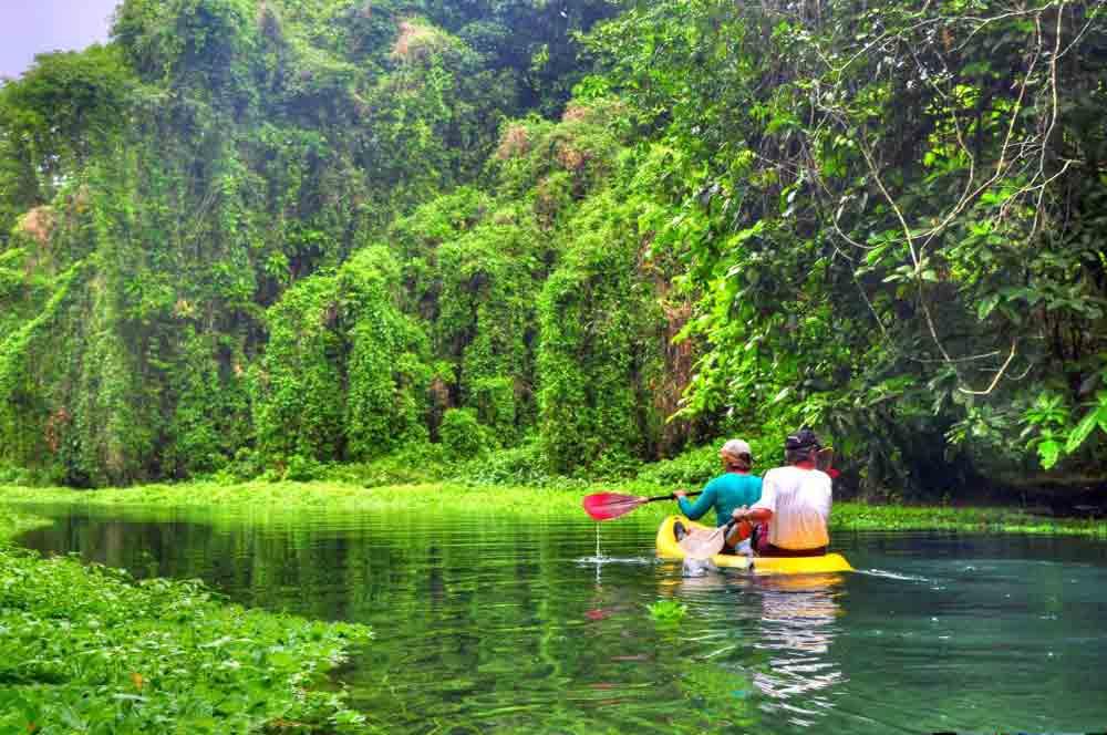 kayak-up-the-matevulu-river-turtle-bay-lodge.