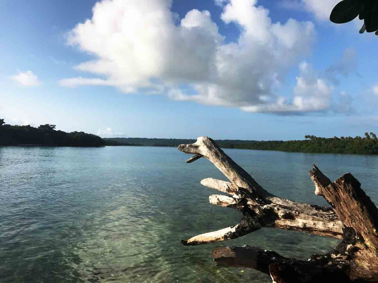 Looking out from Turtle Bay Lodge, Santo, Vanuatu