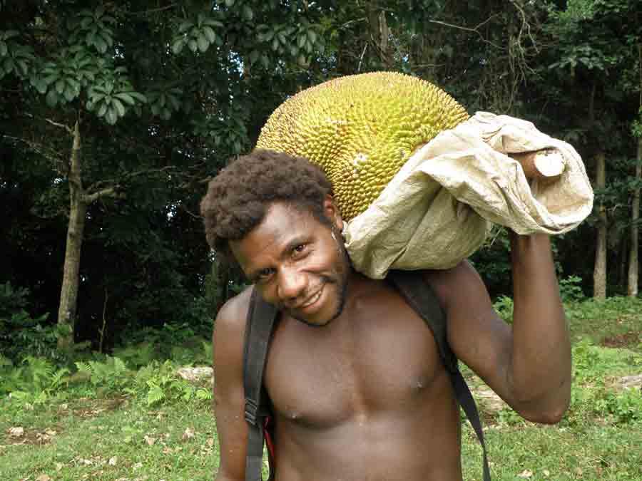 Local Ni-Vanuatu man coming from his garden